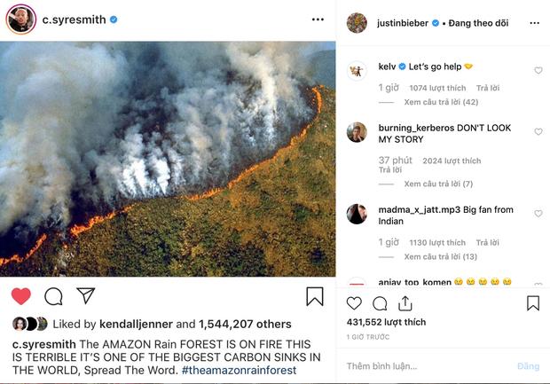 Loạt sao nổi tiếng lên tiếng về vụ cháy rừng Amazon: Justin Bieber, Ronaldo đều hành động, riêng Khloe kêu gọi ngừng ăn thịt bò? - Ảnh 2.