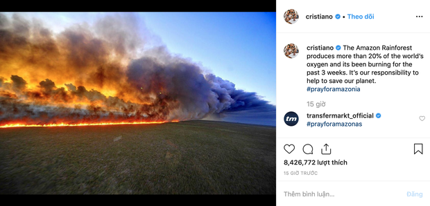 Loạt sao nổi tiếng lên tiếng về vụ cháy rừng Amazon: Justin Bieber, Ronaldo đều hành động, riêng Khloe kêu gọi ngừng ăn thịt bò? - Ảnh 3.