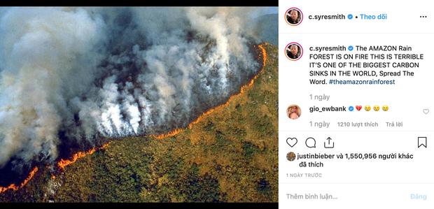 Loạt sao nổi tiếng lên tiếng về vụ cháy rừng Amazon: Justin Bieber, Ronaldo đều hành động, riêng Khloe kêu gọi ngừng ăn thịt bò? - Ảnh 1.
