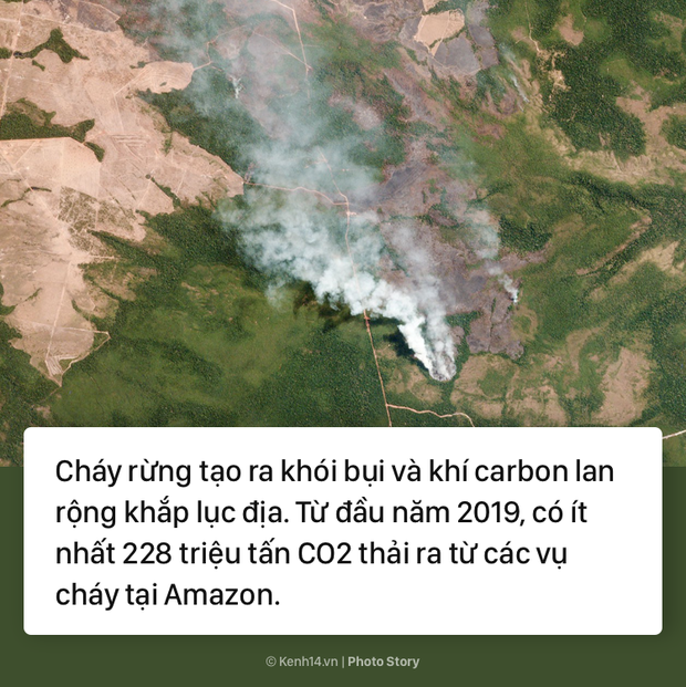 Toàn cảnh thảm hoạ cháy rừng Amazon khiến cả thế giới bàng hoàng - Ảnh 5.