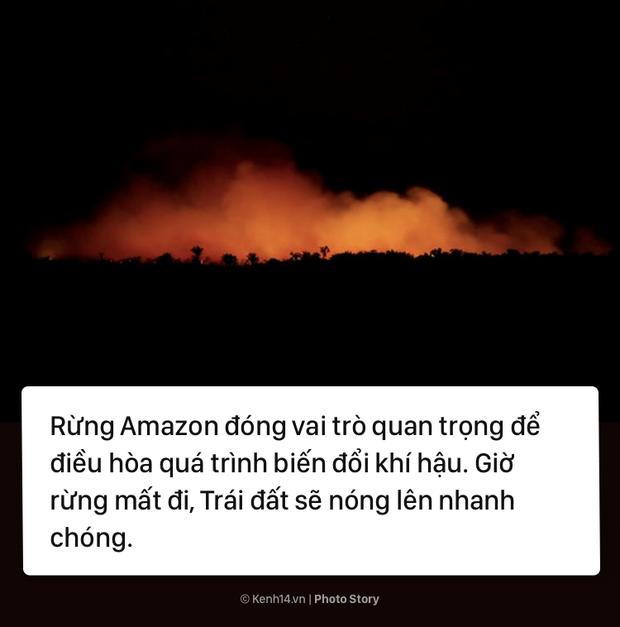 Toàn cảnh thảm hoạ cháy rừng Amazon khiến cả thế giới bàng hoàng - Ảnh 13.