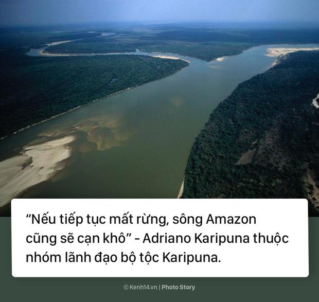 Toàn cảnh thảm hoạ cháy rừng Amazon khiến cả thế giới bàng hoàng - Ảnh 15.