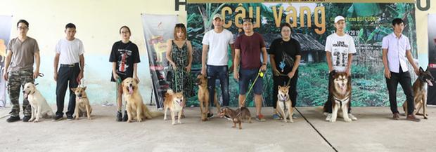 Ai đời lựa vai cho cậu Cậu Vàng là chú chó Nhật, hội yêu văn học phẫn nộ: Sao không chọn Husky luôn đi? - Ảnh 8.