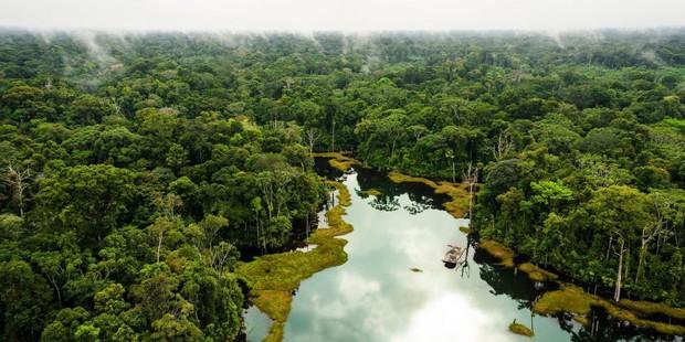 Dù bị cháy rụi nhưng 5 bí ẩn này của Amazon vẫn chưa có câu trả lời: Liệu con người có thể du lịch ở 1 nơi rộng lớn như vậy không? - Ảnh 8.