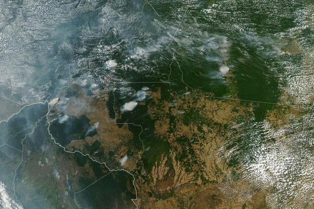 Dù bị cháy rụi nhưng 5 bí ẩn này của Amazon vẫn chưa có câu trả lời: Liệu con người có thể du lịch ở 1 nơi rộng lớn như vậy không? - Ảnh 9.