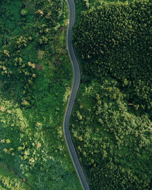 """Hot nhất Đà Nẵng hiện tại chính là """"cổng trời"""" mới toanh dưới chân đèo Hải Vân, nơi có đoàn tàu qua núi đẹp hệt trong phim - Ảnh 6."""