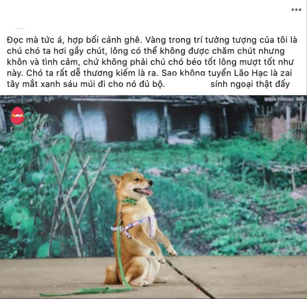 Ai đời lựa vai cho cậu Cậu Vàng là chú chó Nhật, hội yêu văn học phẫn nộ: Sao không chọn Husky luôn đi? - Ảnh 3.