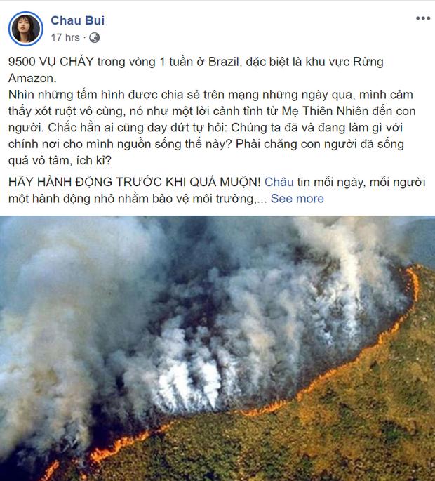 Giới trẻ Việt Nam: Bạn hãy đừng nghĩ cháy rừng Amazon là điều gì đó quá xa xôi! - Ảnh 3.