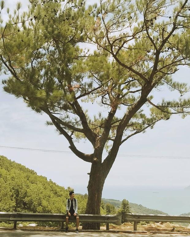 """Hot nhất Đà Nẵng hiện tại chính là """"cổng trời"""" mới toanh dưới chân đèo Hải Vân, nơi có đoàn tàu qua núi đẹp hệt trong phim - Ảnh 4."""