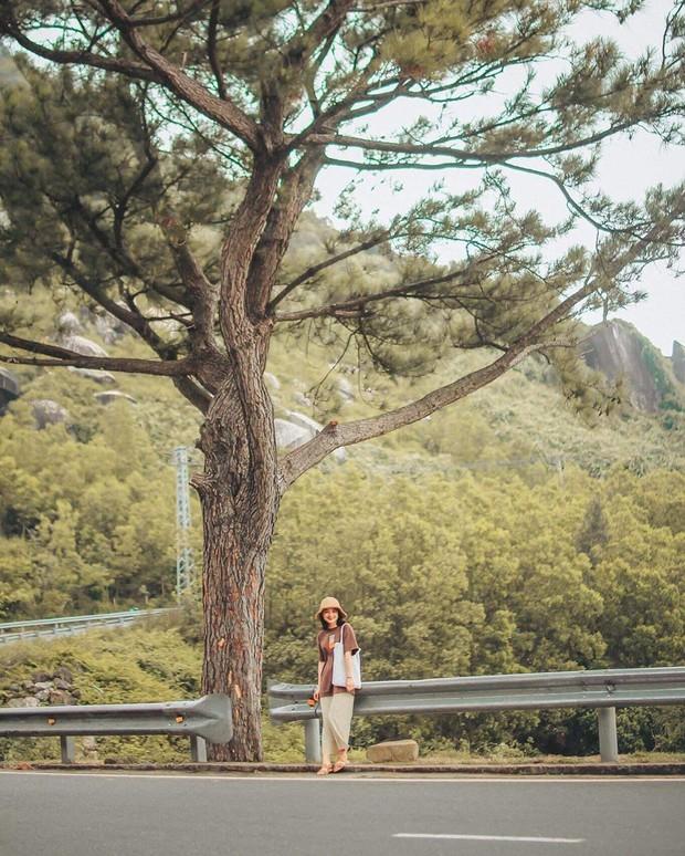 """Hot nhất Đà Nẵng hiện tại chính là """"cổng trời"""" mới toanh dưới chân đèo Hải Vân, nơi có đoàn tàu qua núi đẹp hệt trong phim - Ảnh 2."""