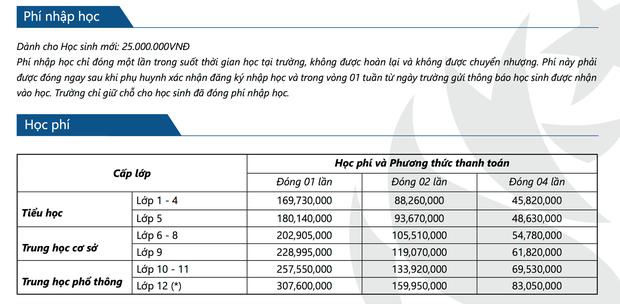 Hàng loạt trường ở TPHCM tự gắn mác Quốc tế, thu học phí khủng tận 380 triệu đồng/năm - Ảnh 3.