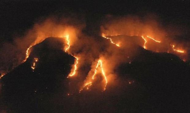 Hơn 4 vạn quân Brazil luôn sẵn sàng đối phó với cháy rừng Amazon - Ảnh 1.