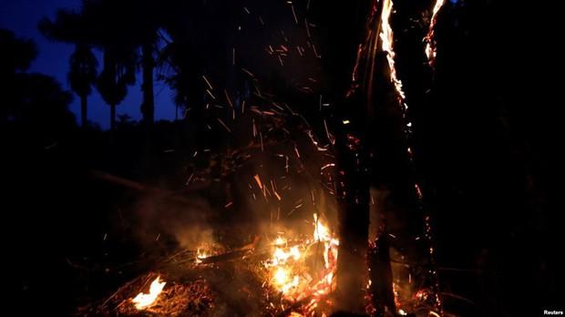Cháy rừng Amazon tàn phá trái đất như vũ khí huỷ diệt hàng loạt - Ảnh 2.