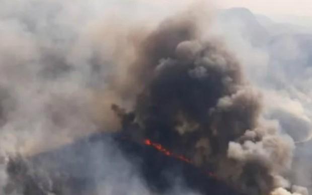 Rừng Amazon ở Bolivia: Hơn 800.000 ha rừng bị tàn phá do cháy - Ảnh 1.
