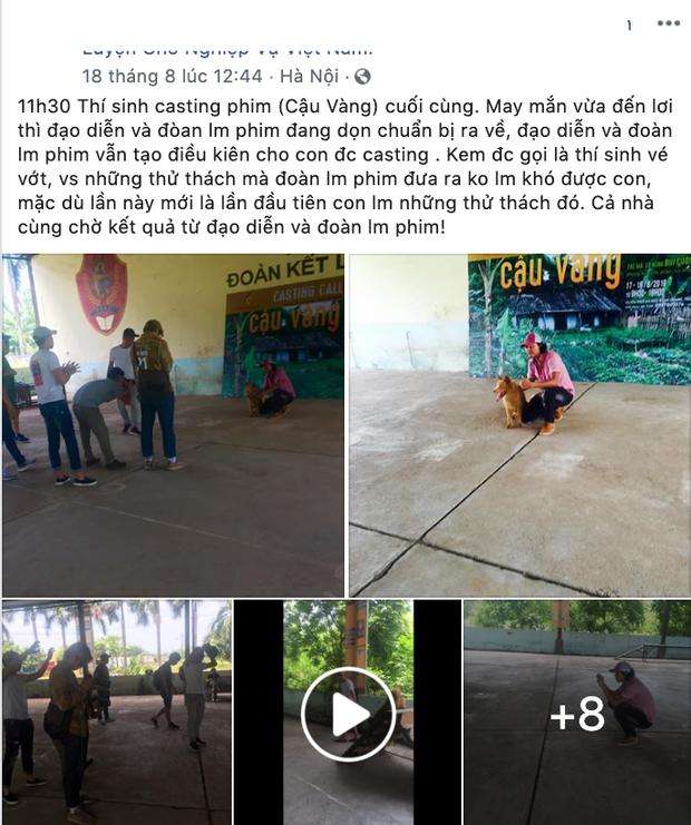 Chê cún thuần Việt thiên tính tự nhiên cao, NSX Cậu Vàng lại bỏ qua chú chó Bắc Hà đáng yêu này? - Ảnh 1.