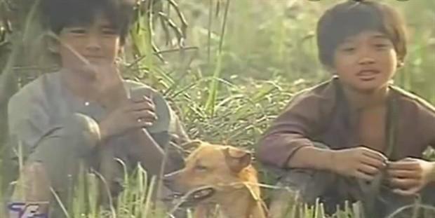 4 em chó ta trên màn ảnh Việt: Nhìn cưng mà diễn tự nhiên, nào có kém cạnh chú Shiba Inu đóng Cậu Vàng? - Ảnh 3.