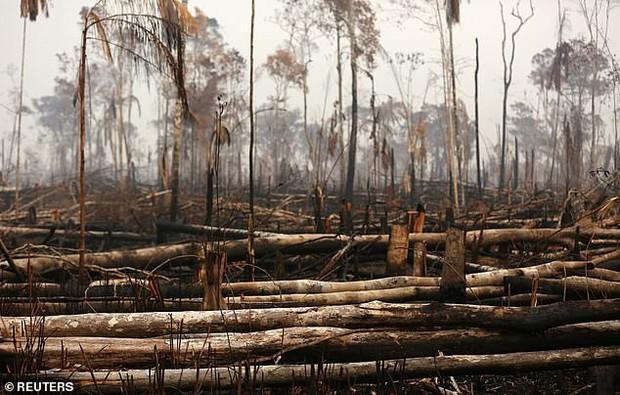 Dân bản địa Brazil gào khóc trước cảnh tượng rừng Amazon bốc cháy: Họ đang giết chết những dòng sông và nguồn sống của chúng tôi - Ảnh 6.