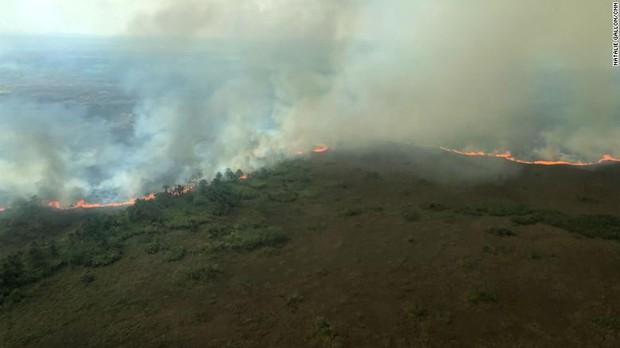 CNN cập nhật tình hình chữa cháy rừng Amazon: Phía dưới máy bay là nghĩa địa vì chúng tôi chỉ thấy cái chết - Ảnh 2.