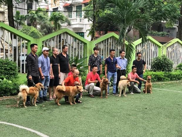 Bị ném đá và thành trò cười của netizen, ekip Cậu Vàng tuyển lại diễn viên yêu cầu 100% chó thuần Việt - Ảnh 1.