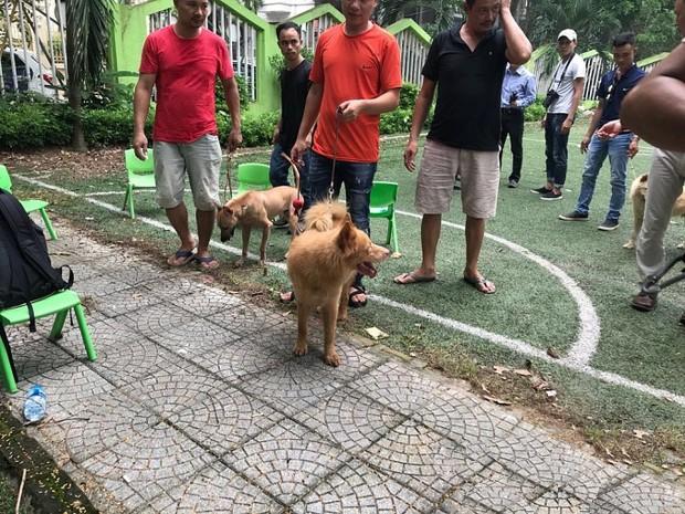Bị ném đá và thành trò cười của netizen, ekip Cậu Vàng tuyển lại diễn viên yêu cầu 100% chó thuần Việt - Ảnh 4.