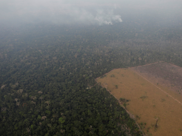 Loạt ảnh Amazon trước và sau đại nạn cháy rừng 2019: Lá phổi xanh ngày nào đã mang đầy bệnh tật do con người đầu độc - Ảnh 10.