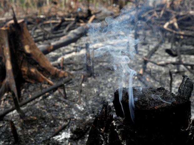 Loạt ảnh Amazon trước và sau đại nạn cháy rừng 2019: Lá phổi xanh ngày nào đã mang đầy bệnh tật do con người đầu độc - Ảnh 12.