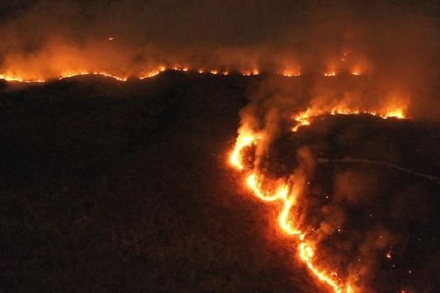 Quân đội Brazil chữa cháy rừng Amazon như thế nào? - Ảnh 1.
