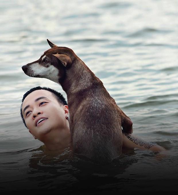 4 em chó ta trên màn ảnh Việt: Nhìn cưng mà diễn tự nhiên, nào có kém cạnh chú Shiba Inu đóng Cậu Vàng? - Ảnh 8.
