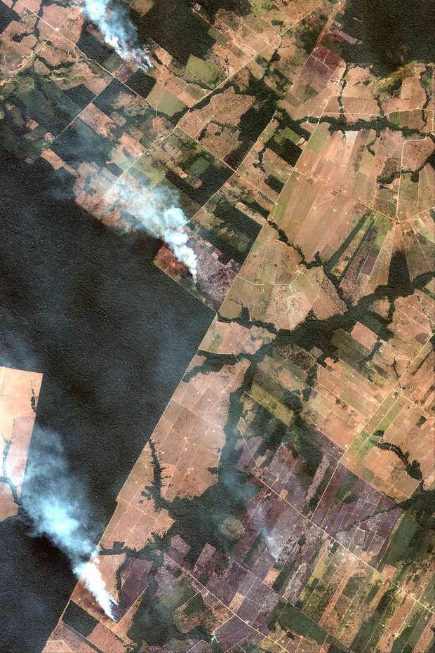 The New York Times: Phân tích ảnh vệ tinh đã chỉ ra chính xác thủ phạm gây cháy rừng thảm họa tại Amazon - Ảnh 2.