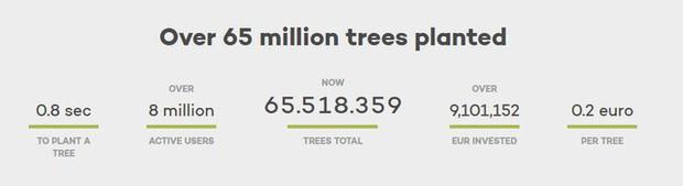 Muốn cứu Trái đất hãy dùng website này thay Google: Dành 80% lợi nhuận để trồng rừng, cứ 45 lượt tìm lại thêm một cây xanh mới được tạo - Ảnh 3.