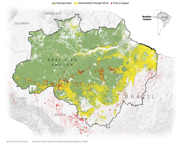 The New York Times: Phân tích ảnh vệ tinh đã chỉ ra chính xác thủ phạm gây cháy rừng thảm họa tại Amazon - Ảnh 1.