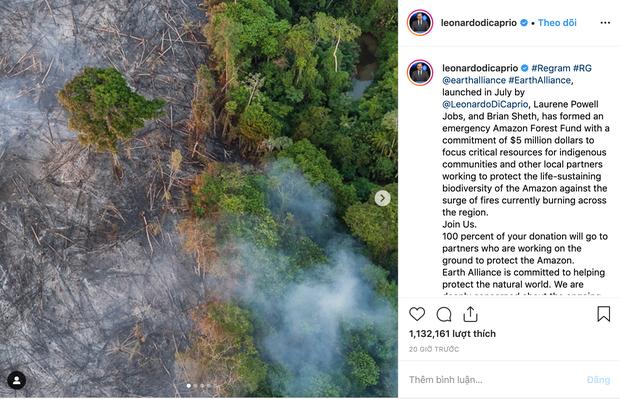 Leonardo DiCaprio gây quỹ gần 120 tỷ chữa cháy rừng Amazon, Justin Bieber, Miley Cyrus thuê máy bay chở nước hỗ trợ - Ảnh 1.