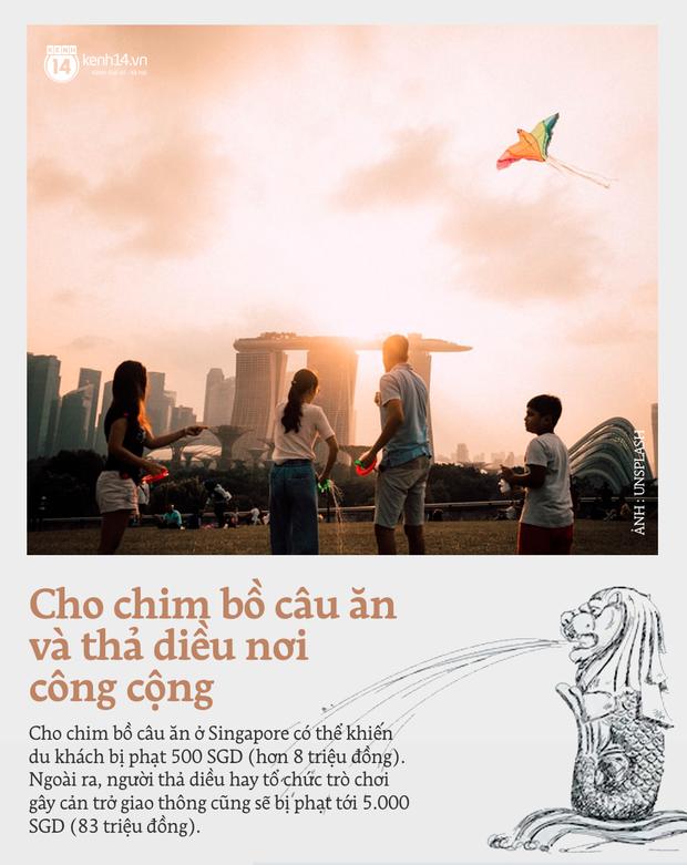 """Những quy định """"cực gắt"""" ở Singapore buộc du khách phải nắm rõ, vì chỉ đi bộ qua đường mà cũng có thể bị... bỏ tù - Ảnh 7."""