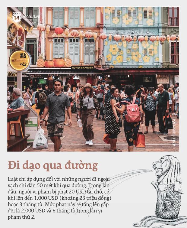 """Những quy định """"cực gắt"""" ở Singapore buộc du khách phải nắm rõ, vì chỉ đi bộ qua đường mà cũng có thể bị... bỏ tù - Ảnh 11."""