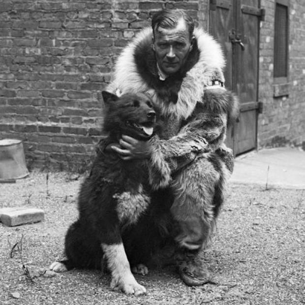 Câu chuyện có thật về 150 chú chó husky anh hùng từng cứu sống ngôi làng 10.000 người khỏi căn bệnh bạch hầu tử thần - Ảnh 4.