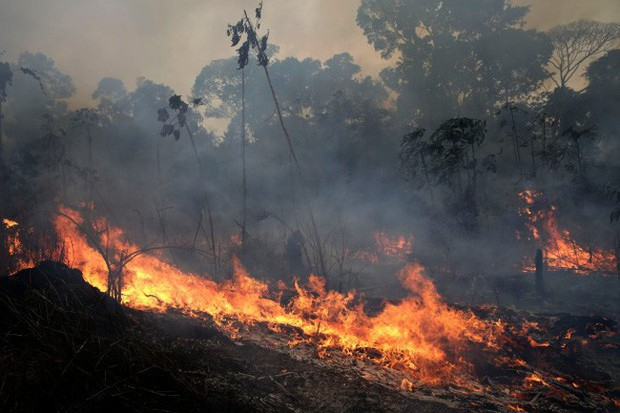 Rừng châu Phi cháy gấp 3 lần Amazon - Ảnh 1.