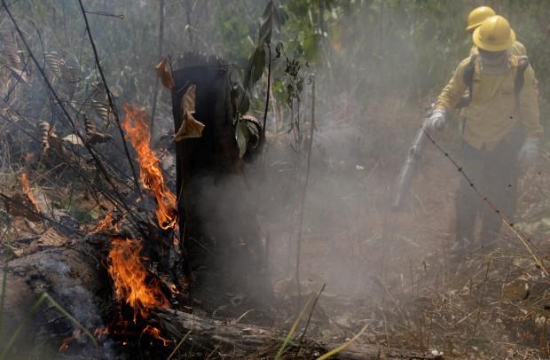 Rừng châu Phi cháy gấp 3 lần Amazon - Ảnh 2.