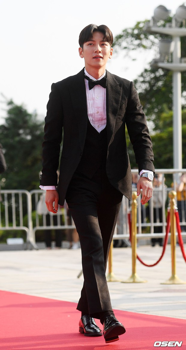 Thảm đỏ Seoul Drama Awards: Trương Ngọc Ánh - Anh Dũng tự tin, Ji Chang Wook quá bảnh, Jang Nara bị dàn mỹ nhân lấn át - Ảnh 14.