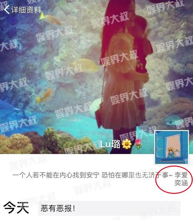 Dân tình bức xúc trước tin Lý Tiểu Lộ đổi tên con gái theo họ mình chỉ 2 năm sau scandal ngoại tình - Ảnh 4.