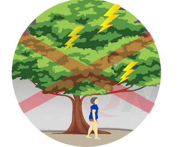 Kỹ năng phòng ngừa tai nạn thương tích mùa mưa bão - Ảnh 2.