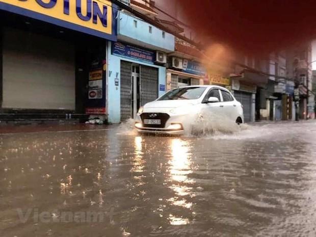Cây cối bị quật đổ tại Hà Nội do ảnh hưởng của bão số 3 - Ảnh 4.