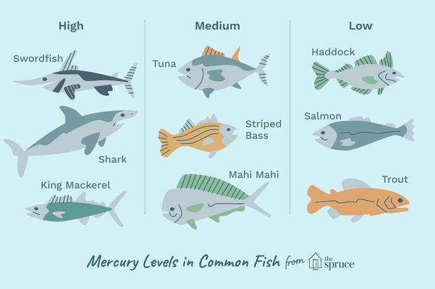 Người đàn ông ở Mỹ bị nhiễm độc thủy ngân do ăn cá, bất cứ ai cũng cần lưu ý trường hợp này - Ảnh 3.