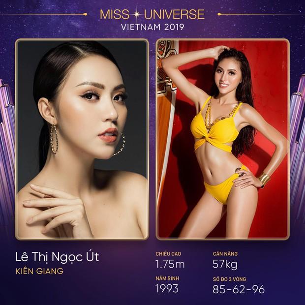 Lại thêm một mùa All Stars hội tụ tại Hoa hậu Hoàn vũ Việt Nam 2019? - Ảnh 11.