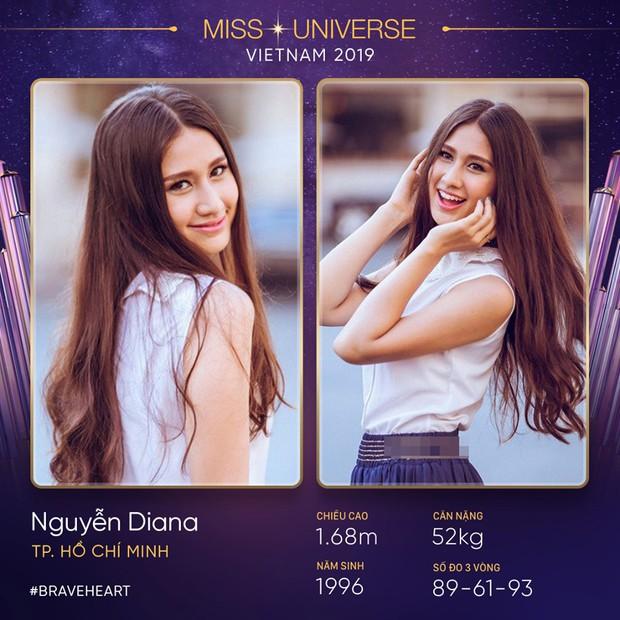 Lại thêm một mùa All Stars hội tụ tại Hoa hậu Hoàn vũ Việt Nam 2019? - Ảnh 8.
