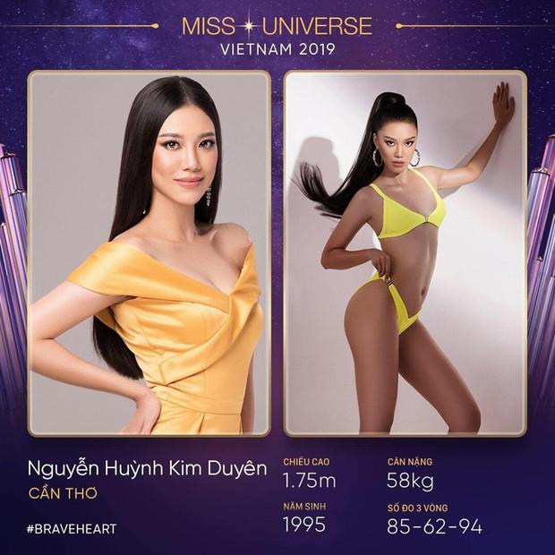 Lại thêm một mùa All Stars hội tụ tại Hoa hậu Hoàn vũ Việt Nam 2019? - Ảnh 9.