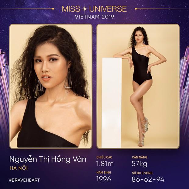 Lại thêm một mùa All Stars hội tụ tại Hoa hậu Hoàn vũ Việt Nam 2019? - Ảnh 10.
