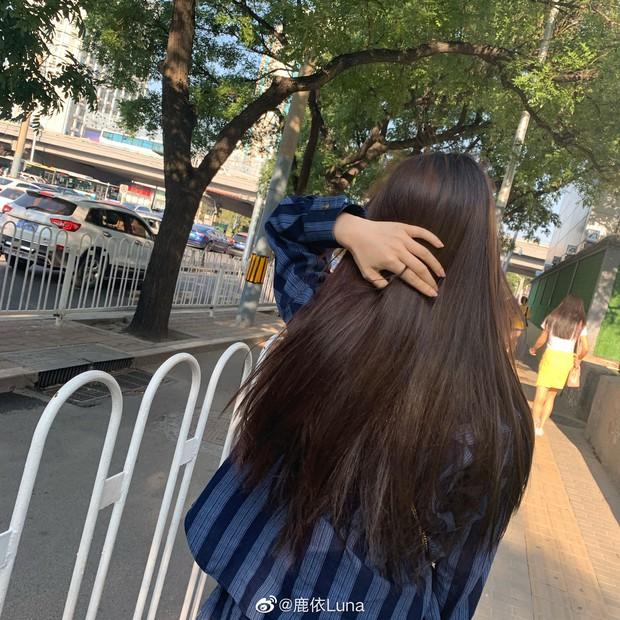 Chỉ đánh son và để tóc dài giản dị vẫn xinh ngất, chẳng trách cô sinh viên năm 2 khiến Ngô Diệc Phàm mê như điếu đổ - Ảnh 7.