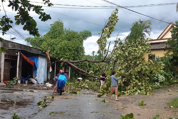Gió lốc càn quét huyện miền núi, mưa lớn diện rộng ở Nghệ An và Hà Tĩnh do ảnh hưởng bão số 4 - Ảnh 3.