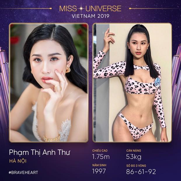 Lại thêm một mùa All Stars hội tụ tại Hoa hậu Hoàn vũ Việt Nam 2019? - Ảnh 7.