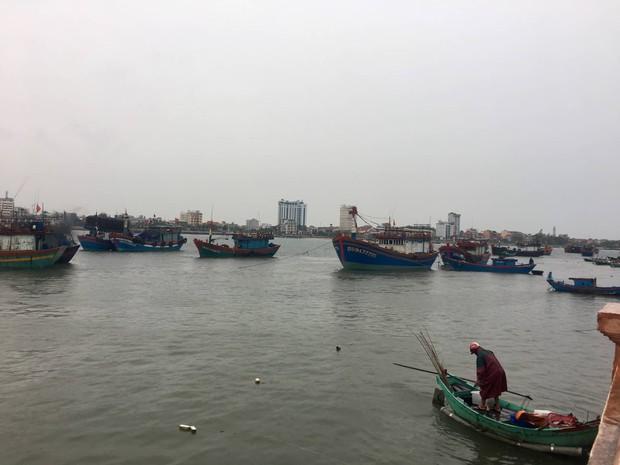Tàu cá bị sóng đánh chìm khi vào trú bão Pudul, 2 ngư dân Quảng Bình gặp nạn - Ảnh 2.